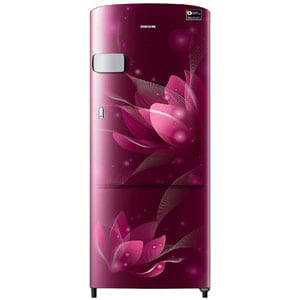 Samsung 192 L 4 Star Inverter Direct Cool Single Door Refrigerator