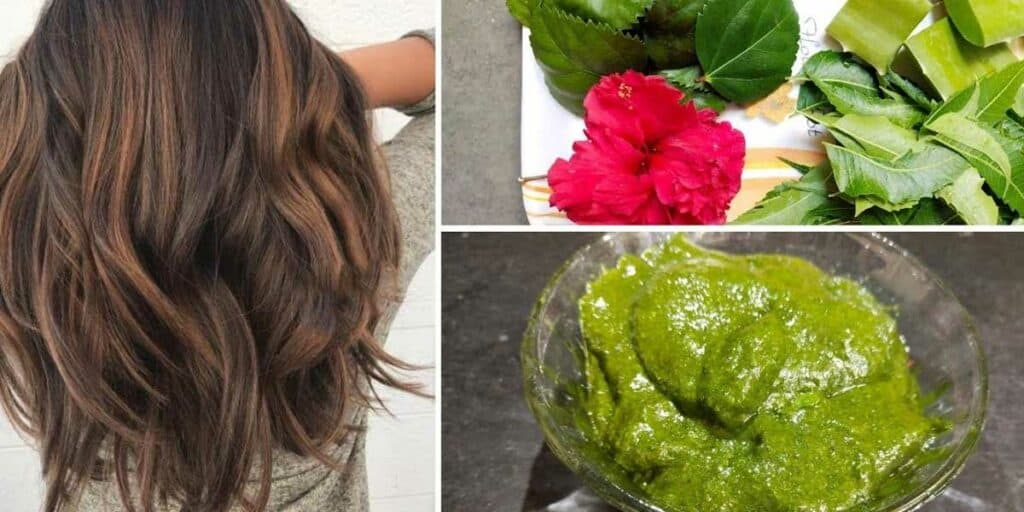 Neem leaves and Hibiscus For Hair Growth