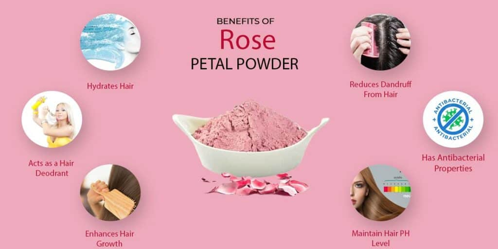 Benefits Of Rose Powder For Hair